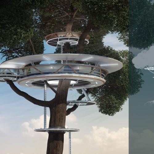 Дома-деревья