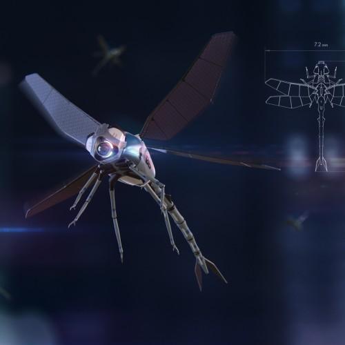Робо-жуки на страже правопорядка